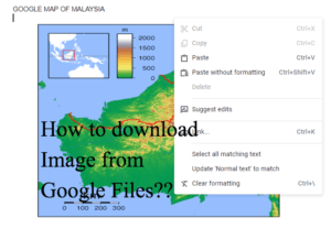 How to Download image from Google Files